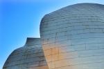 Guggenheim Bilbao, by Insectivida